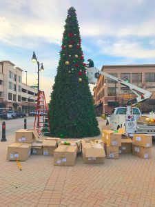 30ft-tower-tree-install
